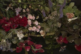 Blumen und Kirschen