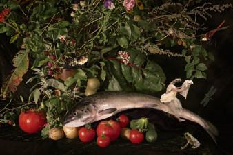 Fischstilleben